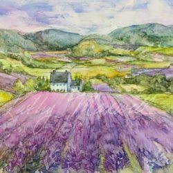 Dreams of Provence