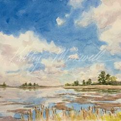 Marsh at Big Stone Beach (Delaware)