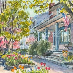 Spring Tulips along Wilson Street